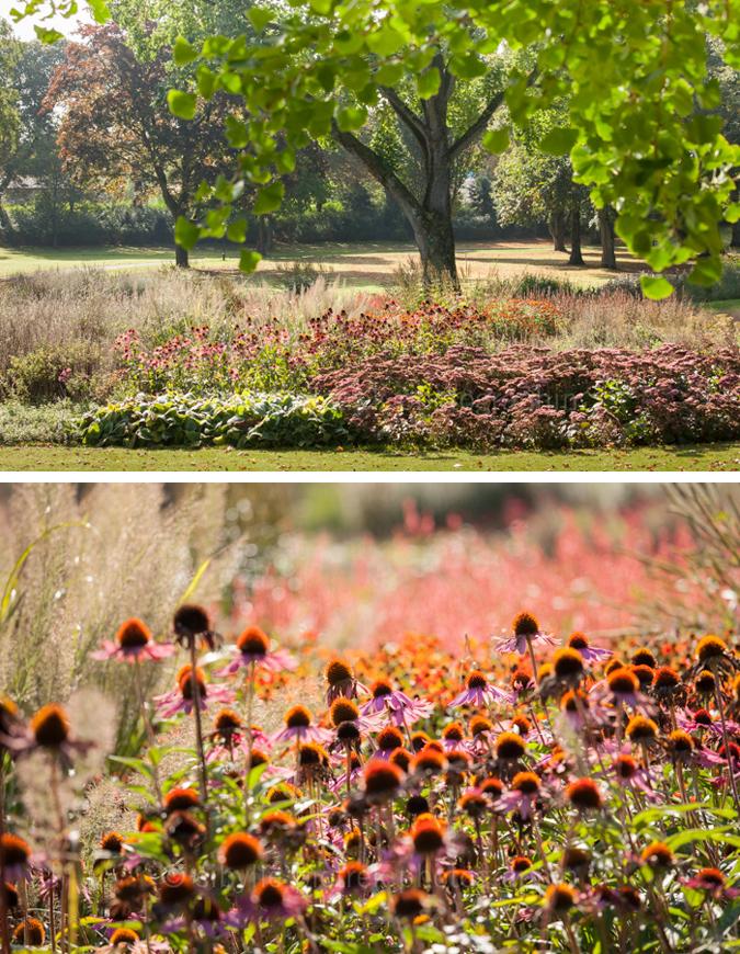 Gartenblick gartenfotografie piet oudolf gr flicher park for Piet oudolf pflanzen