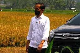 Muhammad Lutfi Klarifikasi Pernyataan Jokowi Soal Bipang Ambawang