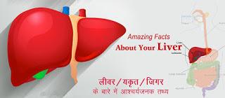 लिवर के बारे आश्चर्यजनक तथ्य Liver Facts in Hindi