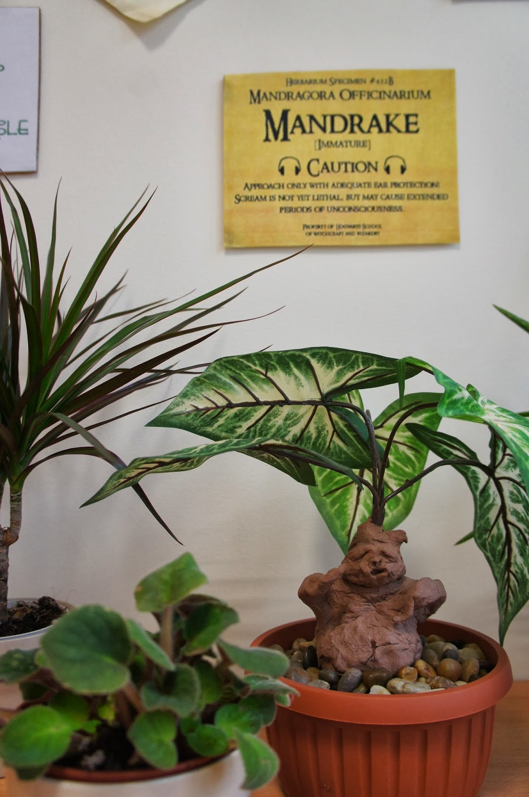 The Charming Classroom Herbology Amp Care Of Magical Creatures
