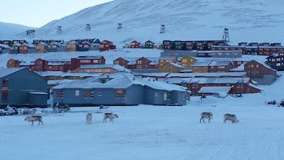 casas-construcciones-tipicas-longyearbyen-svalbard-enlacima