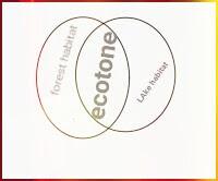 ecotone,ecosystem