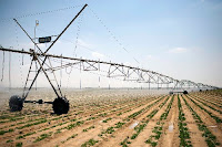 A huge automated irrigation machine moves slowly over a potato plantation on reclaimed desert land in Egypt. A new model shows which areas of the world will be hit hardest by the changes to nature that human-caused climate change have brought. (Credit: flipboard.com)  Click to Enlarge.