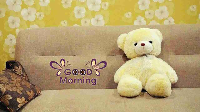 beautiful good morning image of cute teddy