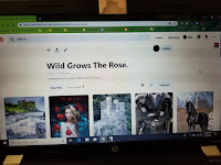 Photo of a Pinterest board devoted to new story.