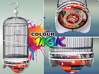 Sangkar Burung Lovebird BnR Colour Magic
