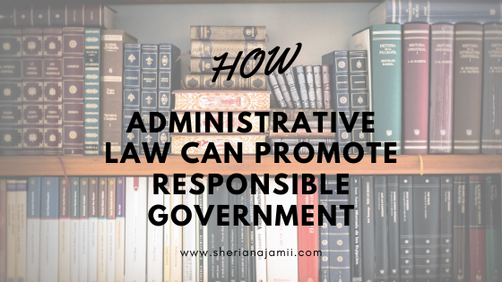 Administrative law, constitutional principles, responsible government