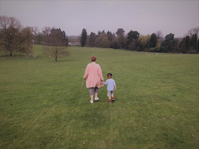 Mother and son walking hand in hand over a field