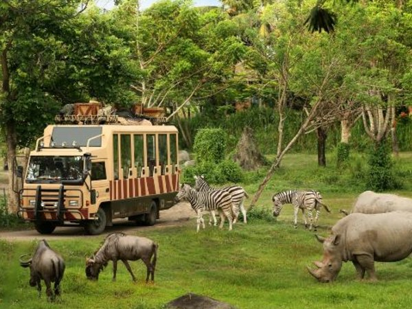 5 Best Tourist Attractions In Bali Island To Spend Our Holiday Time With Family