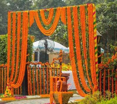 Wedding Planners in Karnal