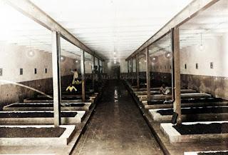 ruang bawah tanah di theefabriek kasinder kota pematangsiantar