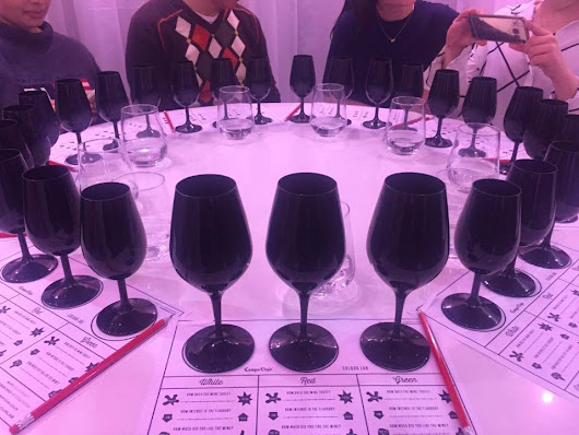 Campo Colour Lab Wine Tasting x Norte