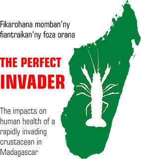 The Perfect Invader logo