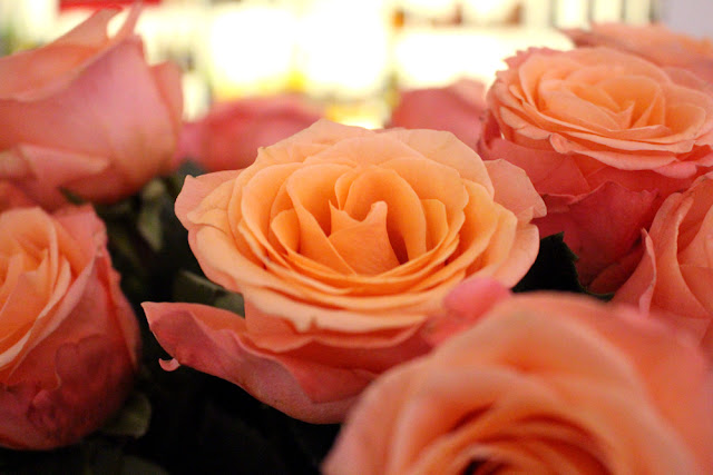 Orange roses at Hotel Josef, Prague - boutique hotels, Czech Republic - Europe travel blog