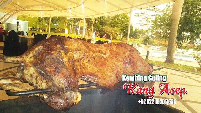 Barbecue Kambing Guling di Cikahuripan Lembang, kambing guling di lembang, kambing guling lembang, kambing guling di cikahuripan lembang, barbecue kambing guling,