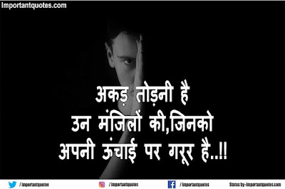 Bhaigiri Dadagiri status image