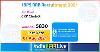 ibps-recruitment-2021-apply-5830-posts-crp-clerks-xi-vacancies-online-indiajoblive.com