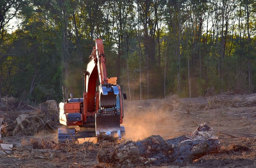 Penebangan Hutan Secara Liar Dan Kejahatan Kemanusiaan