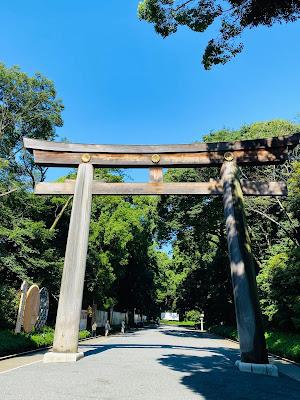 मेजी श्राइन में तोरी, जापान में तोरी, शिंतो धर्म में तोरी, Tori in Shintoism, Biggest Tori of Japan