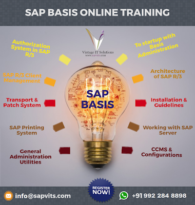 http://www.sapvits.com/project/sap-basis-online-training/