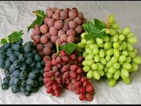 Buah Anggur Gudangnya Antioksidan