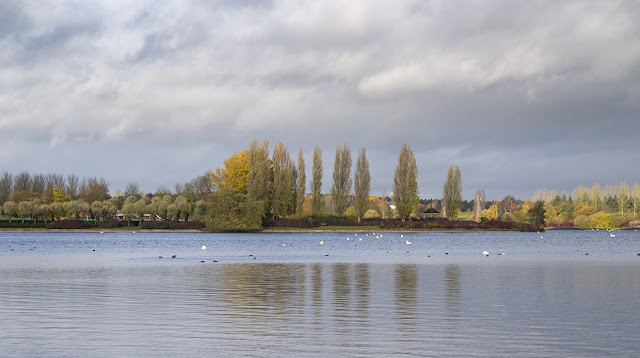 A View Across Willen Lake