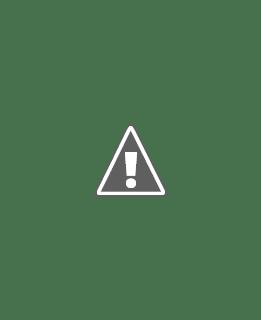 1970 Rosette Bedspread Vintage Thread Lace Crochet Pattern