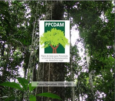 Por que a Globo não mostra o que causa o desmatamento da Amazônia