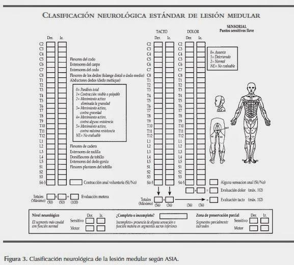 CLASIFICACIÓN NEUROLÓGICA ESTÁNDAR DE LESIÓN MEDULAR