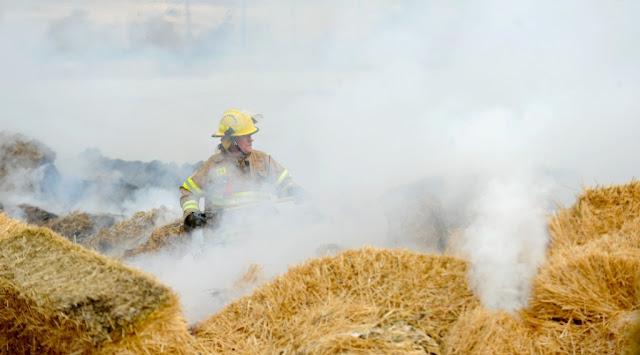 Близо 200 тона фураж изгоря във ферма край Балчик