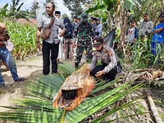 Polsek Tellu Siattinge Datangi TKP Penemuan Mayat Tergantung di Pohon