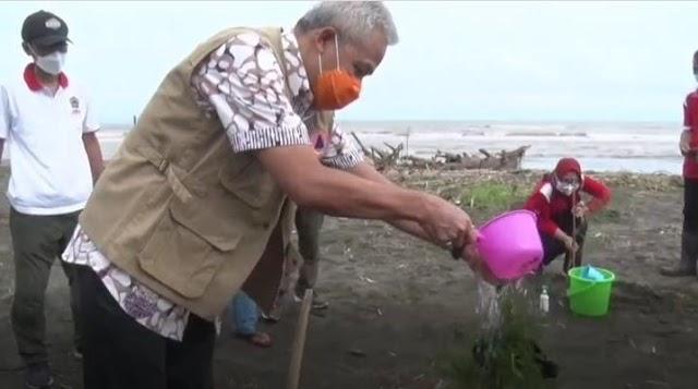 Ganjar Pranowo Tanam Ratusan Pohon di Pantai Indah Kemangi Kendal