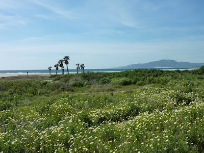 Anyone for a beautiful quiet beach, Tarifa, Spain