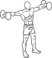 Shoulder Workouts : The best exercises you need to know