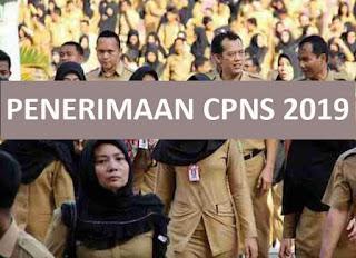 Download contoh soal CPNS tahun 2019 plus kunci jawaban lengkap