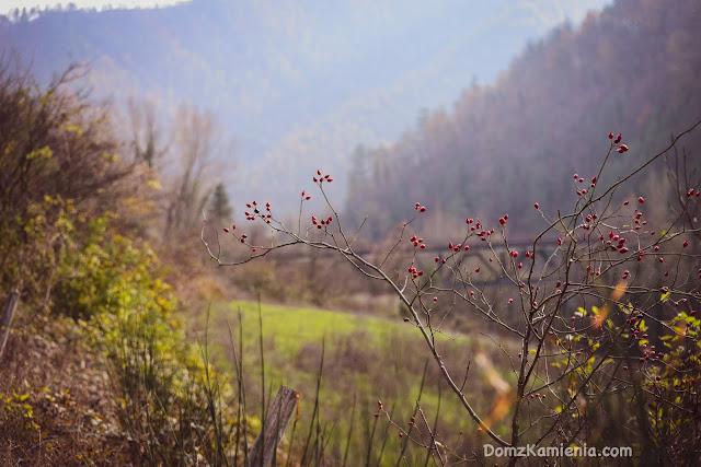 Marradi - Biforco, Dom z Kamienia blog