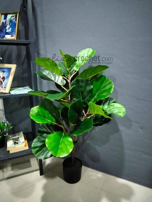 Pokok Hiasan Tiruan Fiddle Fig