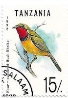 Selo Picanço-quadricolor