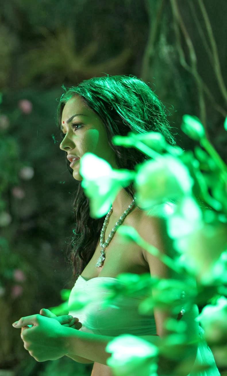 Amy Jackson Hot Stills in I Movie ~ HD TELUGU GALLERY