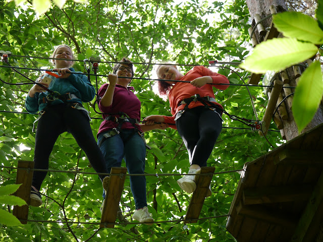 3 females in the trees