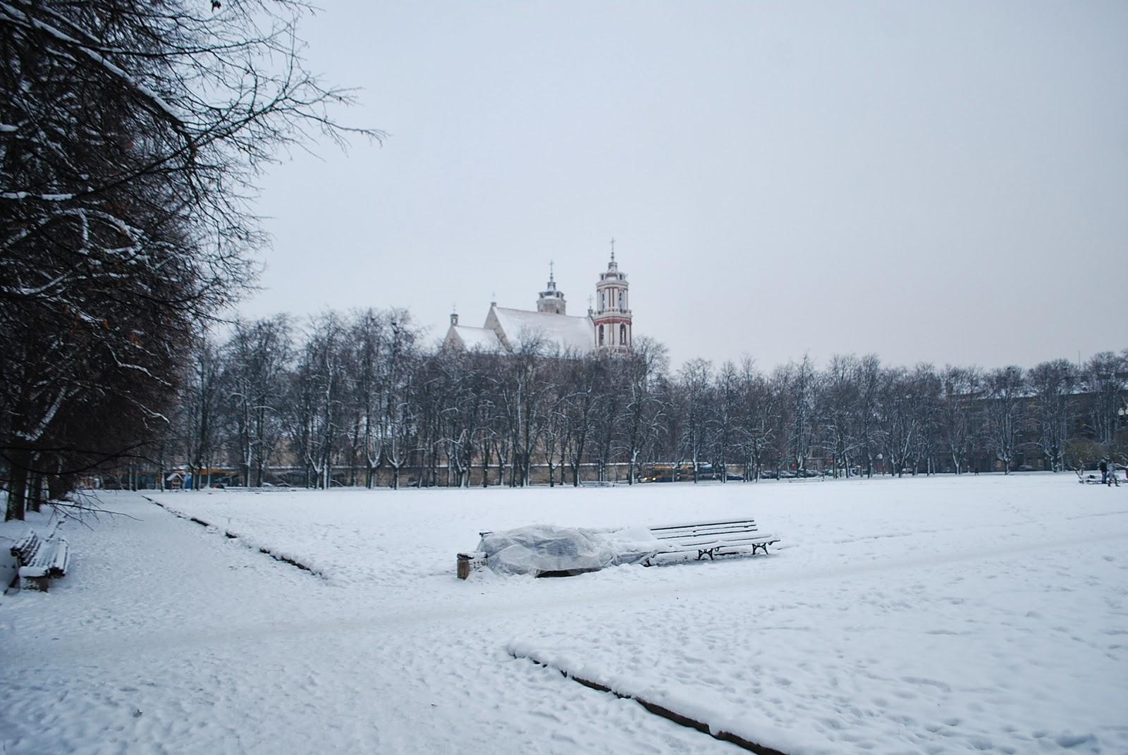 Ночлежка бездомного на лавочке практически в центре Вильнюса.