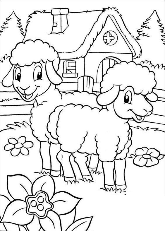 Hình tô màu hai con cừu