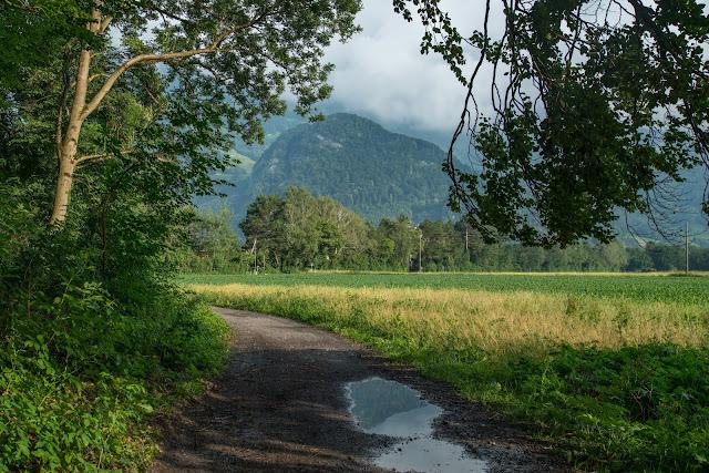 Rund ums Ellhorn  Wanderung Balzers  Fürstentum Liechtenstein 04
