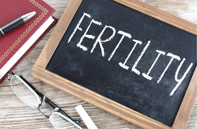 How fertility is a demographic factor