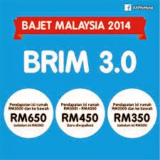 BR1M 3.0