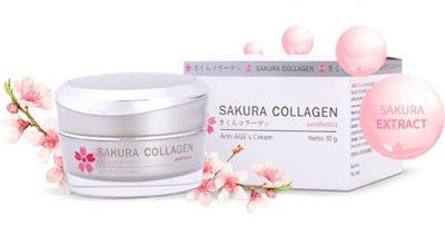 Kemasan krim Sakura Collagen Anti AGE's yang simpel dan elegan.