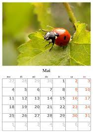 Días Destacados Mayo 2021