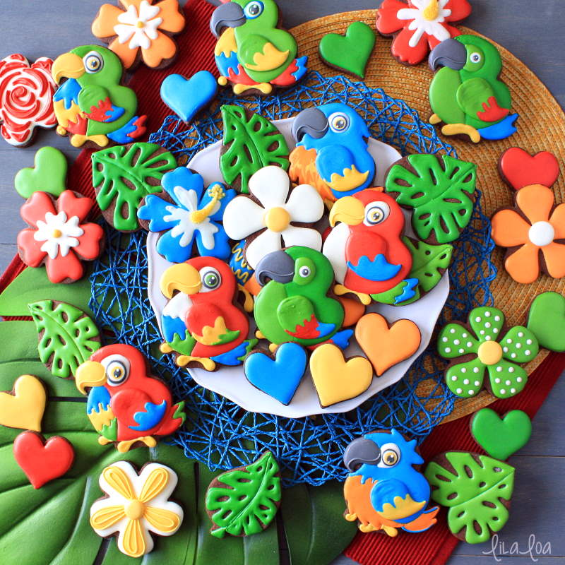 brightly colored tropical jungle decorated chocolate sugar cookies -- parrots and flowers and leaves