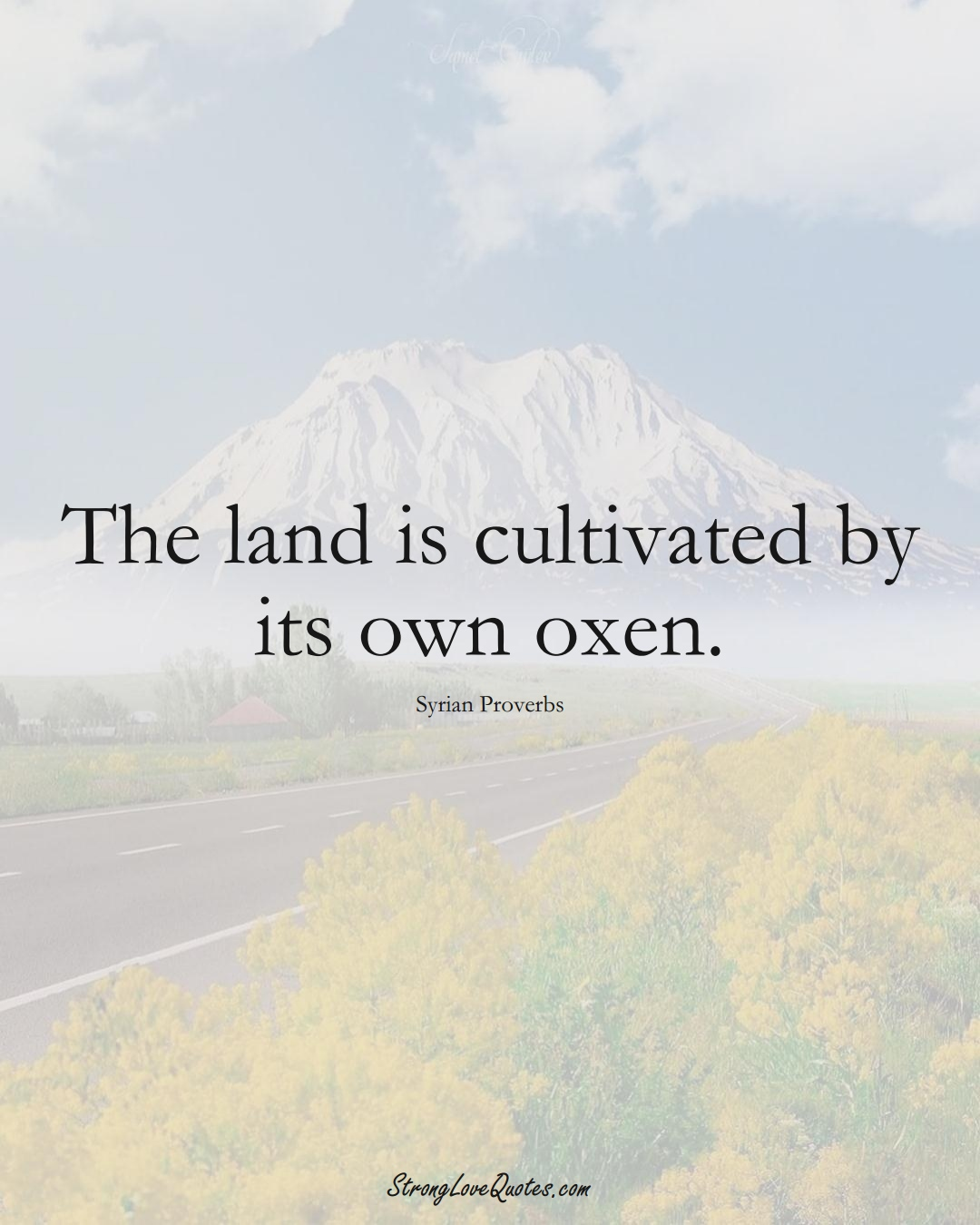 The land is cultivated by its own oxen. (Syrian Sayings);  #MiddleEasternSayings