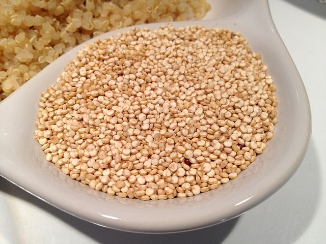can dogs eat quinoa, is quinoa bad for dogs